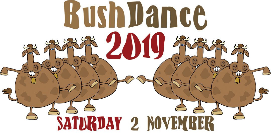 Bush Dance 2019